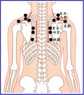 健美小百科(7)肩頸酸痛